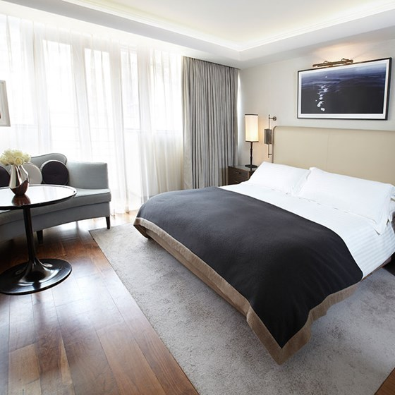 Contemporary Superior King Room