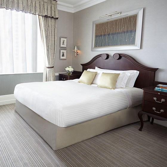 Superior Queen Single Room